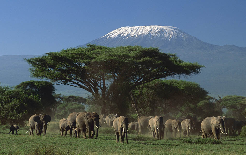 amboseli-national-parkel