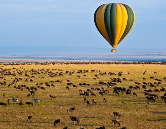 ballon-safari-mara